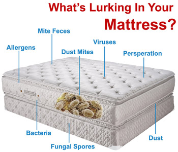 Urine Treatment for Mattress